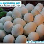 Trứng Vịt Lộn Có Tốt Cho Nam Giới Không
