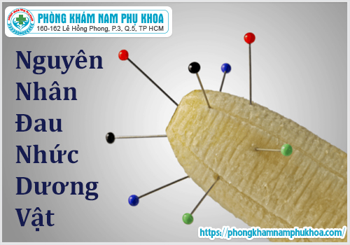 nguyen-nhan-dau-nhuc-duong-vat